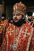Епископ Бронницкий Амвросий: Вера дает молодым людям ощущение риска